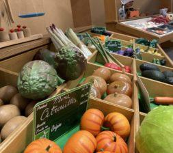 Légumes 6 PT copie-min