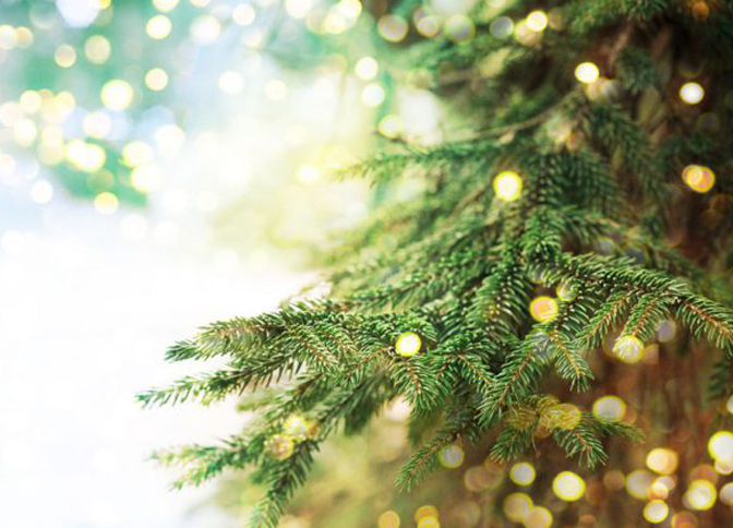 Festijeux - Animation événements Noel, arbre de Noël